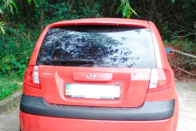Житомирські поліцейські знайшли викрадений автомобіль на кладовищі