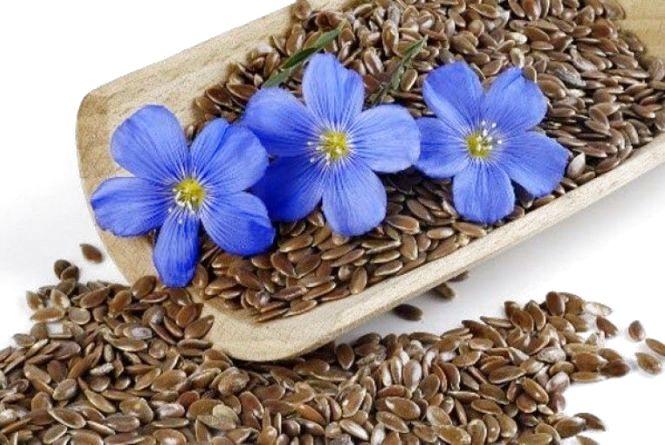 Підприємцям Житомирщини пропонують отримати відшкодування за вирощування льону та гречки: як долучитися