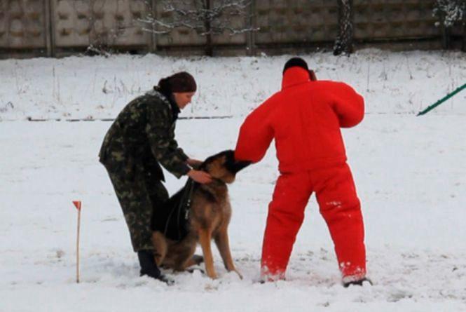 У Житомирі відтепер готують поліцейських кінологів