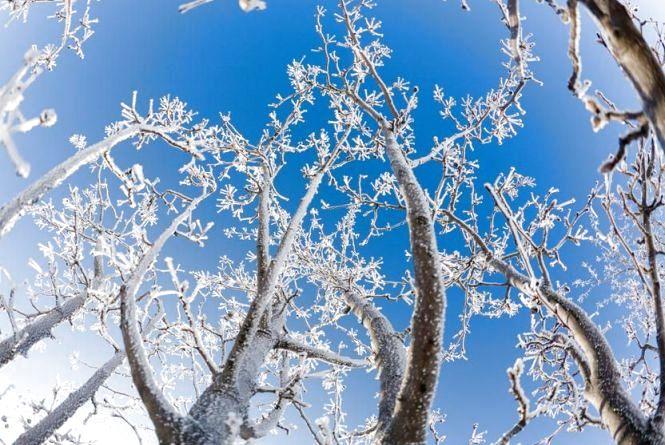 Сьогодні у Житомирі морозно