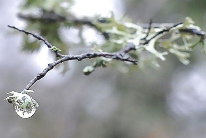 У Житомирі хмарно й тепло