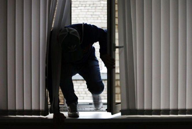 Радомишльська поліція розслідує крадіжку з місцевого підприємства