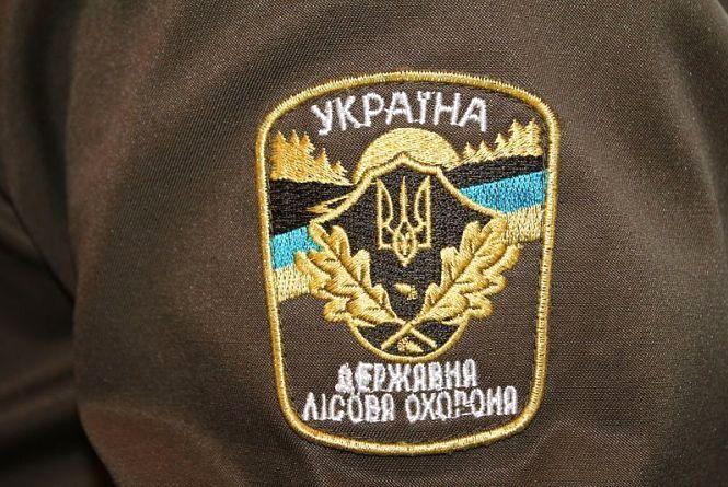 На Житомирщині підпалили господарчу будівлю на подвір'ї мисливствознавця