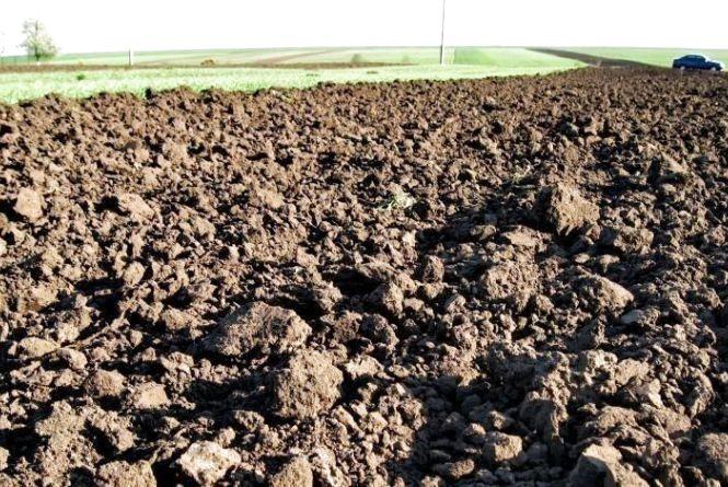 Орендарі землі не сплатили понад 300 тис грн боргу та потрапили в поле зору прокуратури