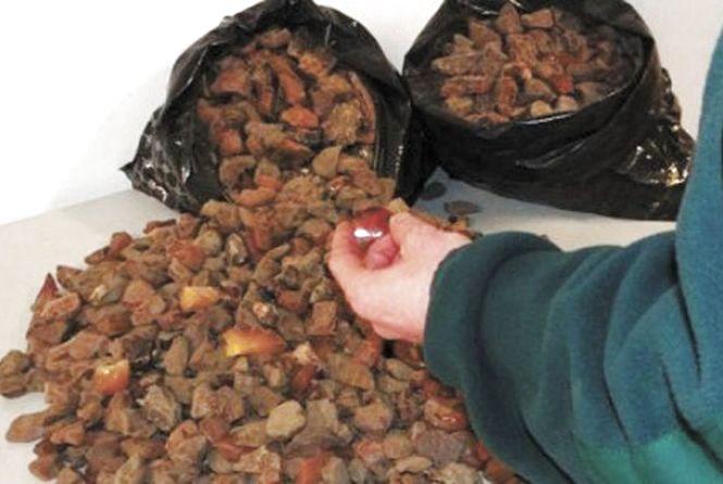 Під час обшуків в Олевську у приватних обійстях вилучено 40 кг бурштину