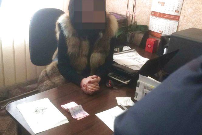 У Бердичеві викрили керівника райсектора міграційної служби, яка «торгувала» закордонними біометричними паспортами