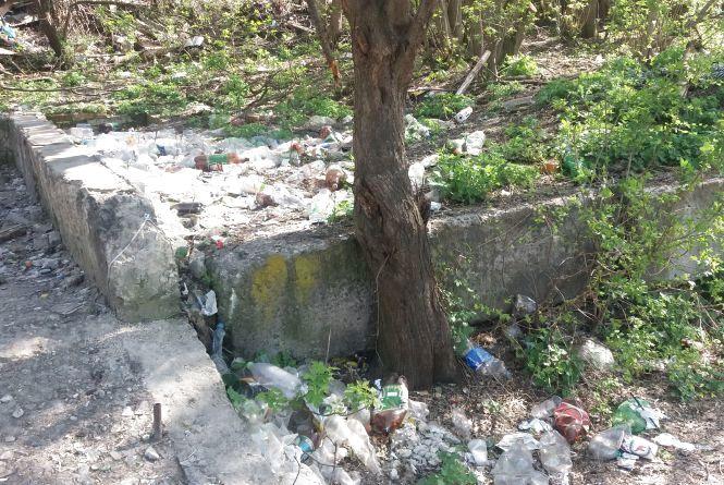 Жахливий смітник у центрі Житомира. Фото