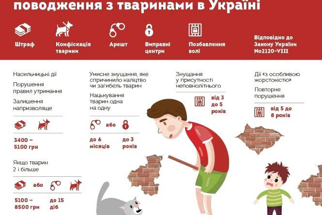 Домашні тварини на контролі. Як зміниться відповідальність власників