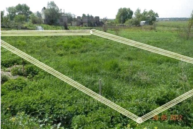 Прокуратура відібрала у житомирянки незаконно придбану нею земельну ділянку площею 0,8 га