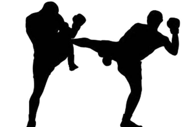 У Житомирі відбудеться турнір з кікбоксингу WAKO «Перший Кошовий»