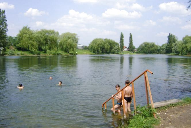 Купальний сезон: де на Житомирщині вода несе загрозу для здоров'я