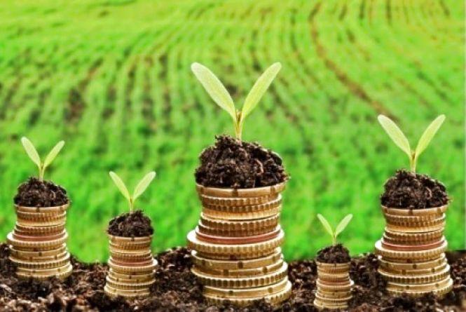 Використовуєш земельну ділянку – заплати податок або орендну плату!