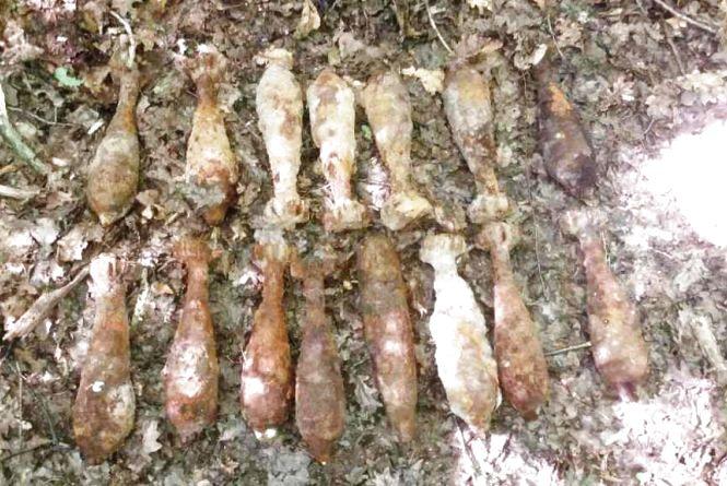Знову відлуння війни: у Любарському районі піротехніки ДСНС знищили 15 вибухонебезпечних предметів