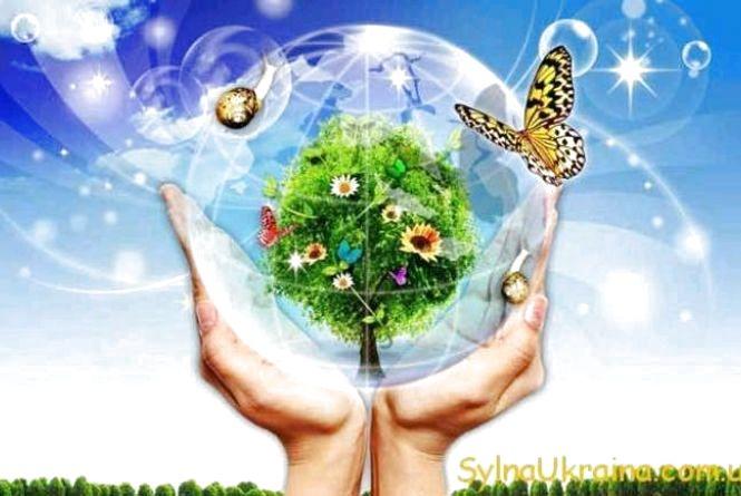 На Житомирщині сплачено понад 11 мільйонів гривень екологічного податку