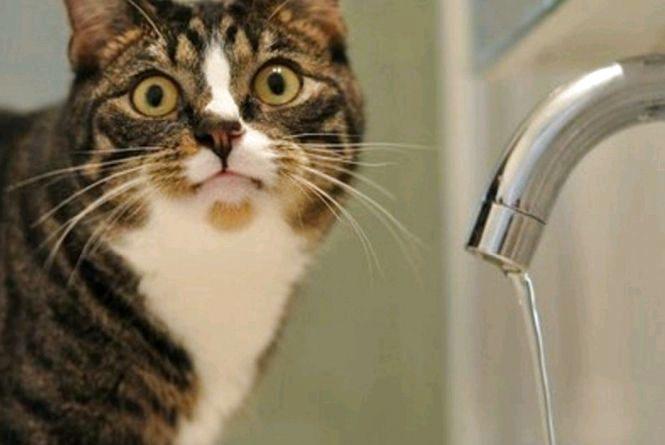 Житомир очікує чергове велике відключення води