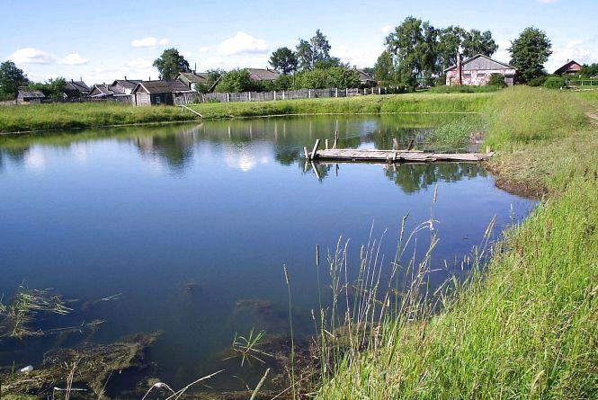 Орендна плата за користування водоймами в області збільшилась у десятки разів