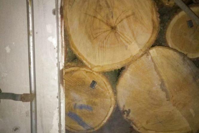 Вантажівку з деревиною невідомого походження зупинили патрульні на автодорозі «Київ-Ковель»