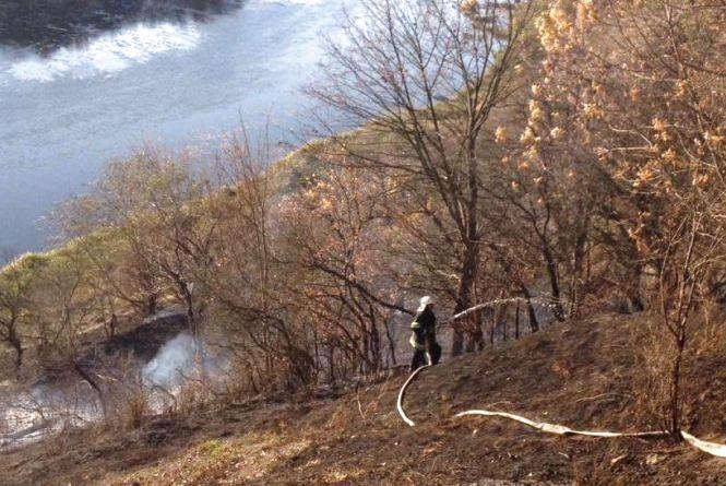 Житомирська область: упродовж доби вогнеборці ліквідували 4 пожежі у природних екосистемах, одну з яких на торфовищі