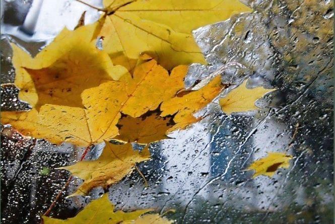Житомирян чекають справжні осінні вихідні - з прохолодою і дощем