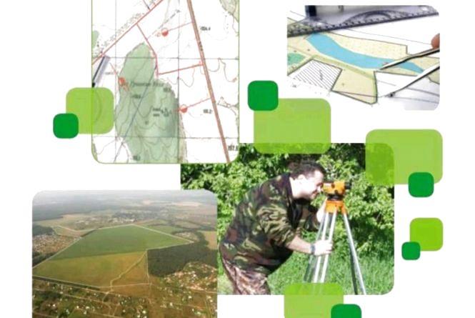 Фахівці землевпорядної служби Житомирщини опрацювали понад 100 тисяч заяв з питань ведення Державного земельного кадастру