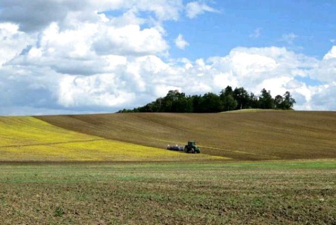 Народицька селищна рада передала у незаконне використання 117 га сільськогосподарських угідь вартістю понад 5 млн грн
