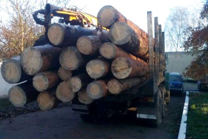На Житомирщині в черговий раз затримано авто з лісопродукцію без документів
