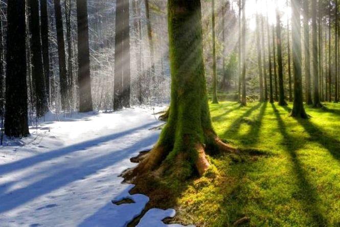 Нас чекає аномально тепла зима