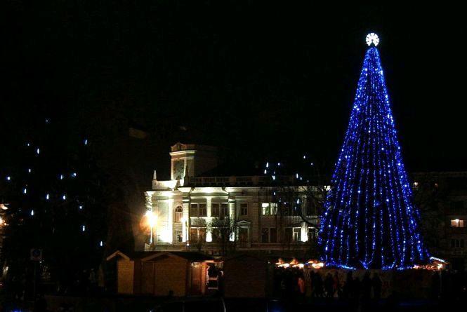 На новорічні свята Житомир прикрасить жива ялинка