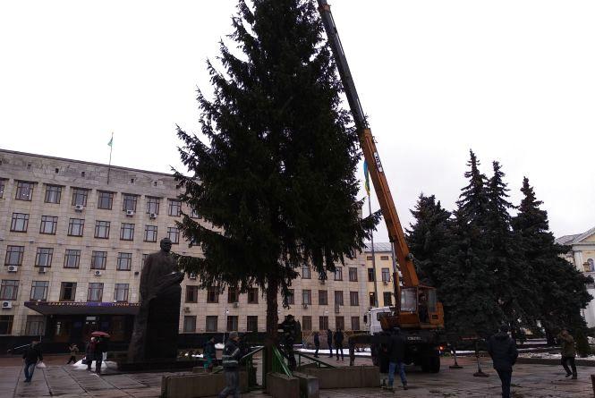 В Житомирі встановили новорічну ялинку. ВІДЕО