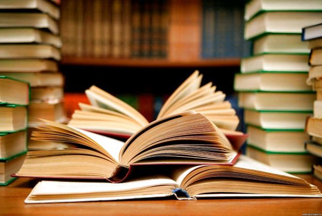 «Мертві душі» у бібліотеці, або Як депутат районної ради розтрачує бюджетні кошти