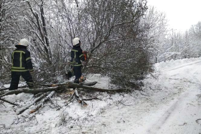 Житомирська область: рятувальники прибирали з дороги повалене дерево