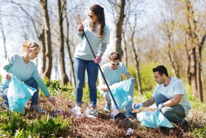 Висаджувати дерева,  компостувати траву та сухе листя і не білити бордюри, - житомирянам нагадали правила весняної толоки
