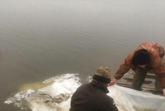 У Карабачинське водосховище випустили 100 тисяч рибин -  коропа, товстолоба, білого амура та судака