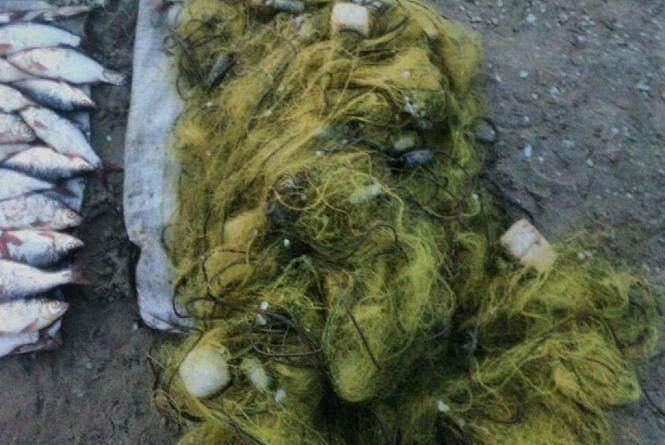 Прикордонники затримали бракон'єра з незаконно виловленою рибою