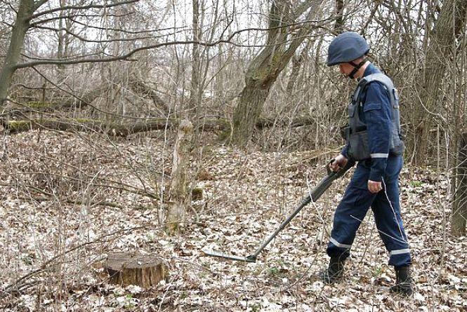 У лісосмузі поблизу Коростишева лісівник виявив снаряд