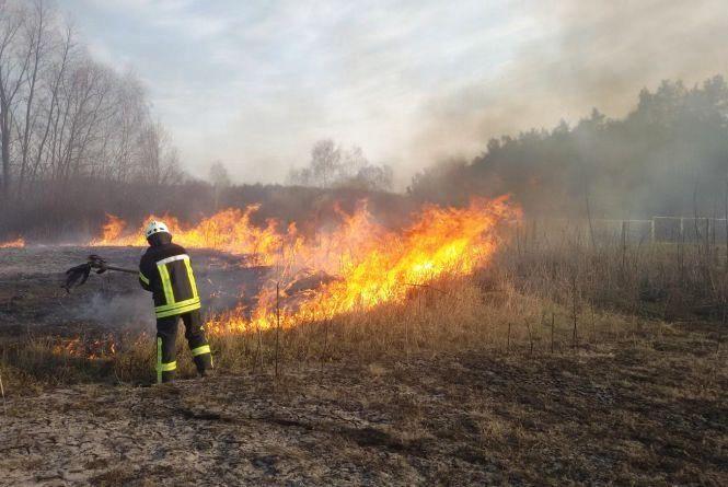 На Житомирщині за добу горіло 4 гектари сухої трави