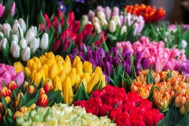 У Житомирі до 8 Березня обладнають квіткові базари