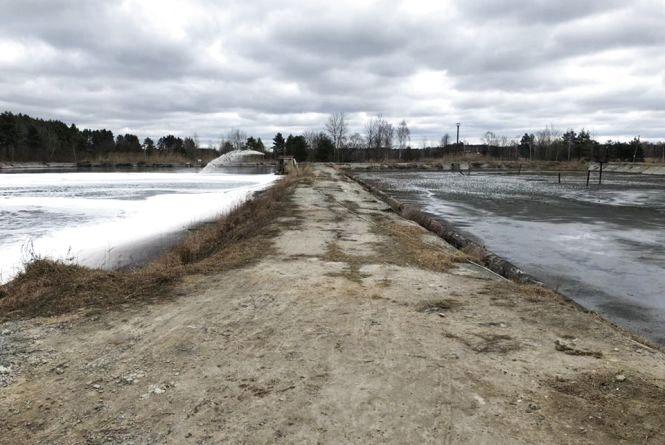 Державну екологічну інспекцію непокоїть стан річок Случ та Хомора