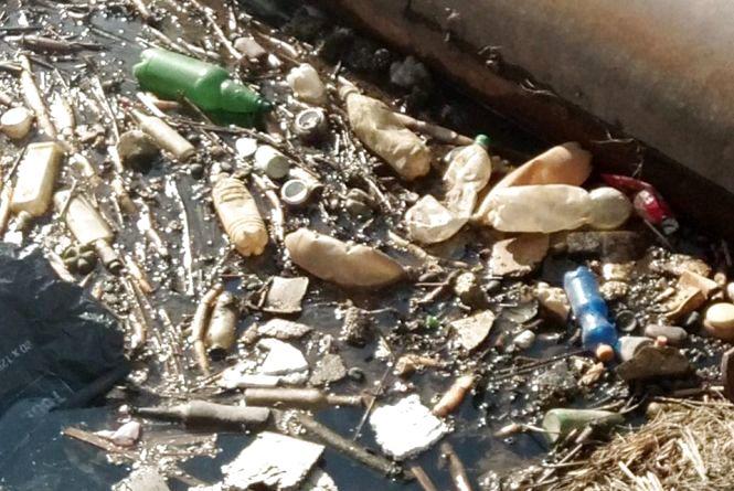 Всупереч фотофіксації, влада Житомира не визнає екологічну катастрофу в районі річки Крошенки