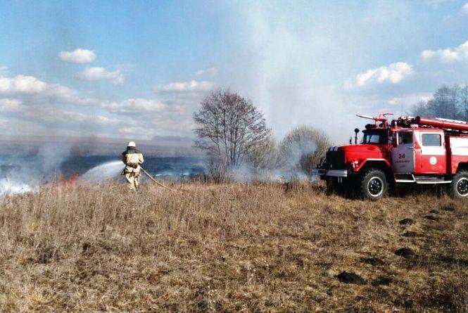 На Житомирщині горить суха трава