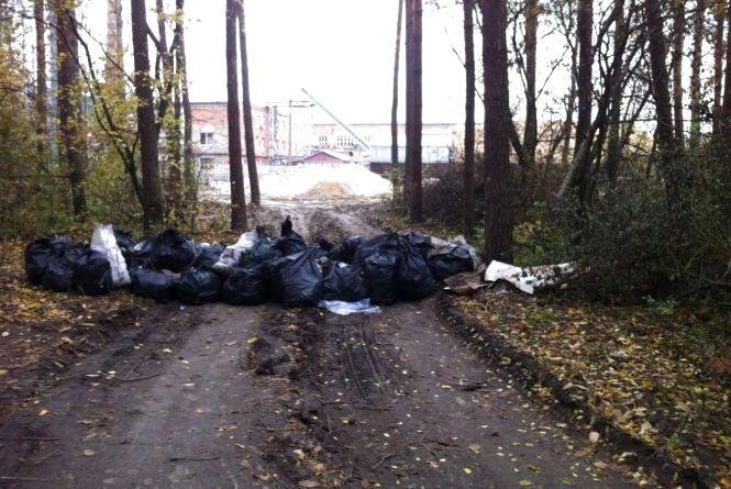 Жителі «Бумажки» самі вийшли прибирати ліс