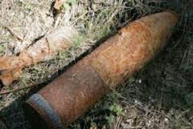 Піротехніки ДСНС на Житомирщині знищили два вибухонебезпечні предмети часів минулих війн