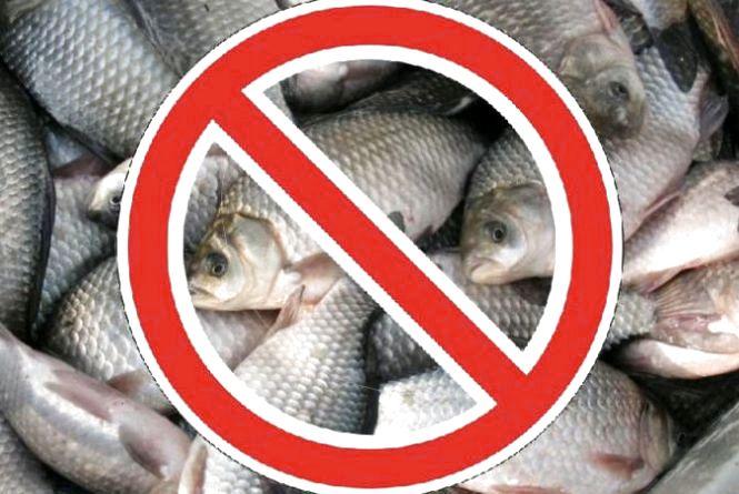 До уваги рибалок: на водоймах області з 1 квітня заборонено ловити рибу і раків