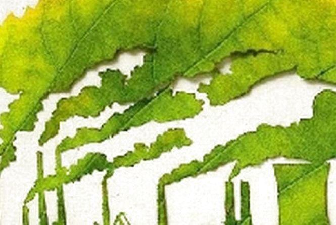 Ліс, вода та надра поповнили бюджет Житомирщини на 49 мільйонів гривень