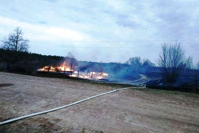 Дві споруди і два автомобілі згоріли внаслідок пожежі від паління сухої трави у Радомишльському районі
