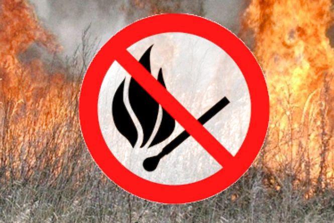 У Радомишльському районі, спалюючи суху траву, загинула 81-річна жінка