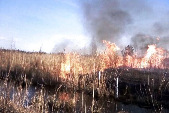 Вогнеборці щодня рятують від знищення пожежами житловий сектор