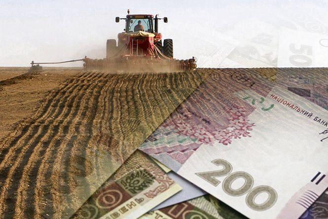 Завдяки підтримці Уряду молодий фермер до 35 років може отримати до 40 тис. грн, - Віктор Шеремета
