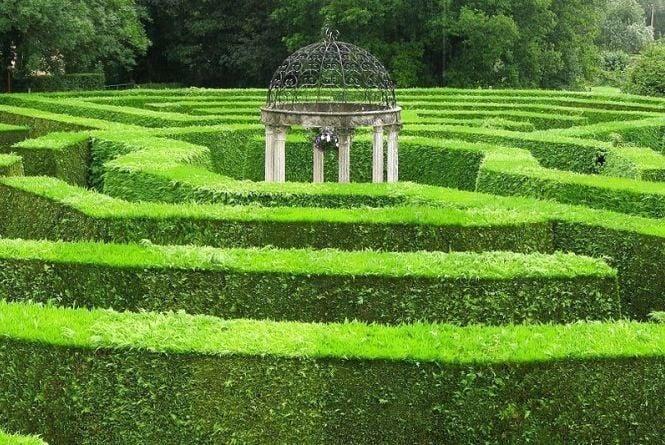 У житомирському парку ім. Ю. Гагаріна з'явиться перший «Зелений лабіринт»