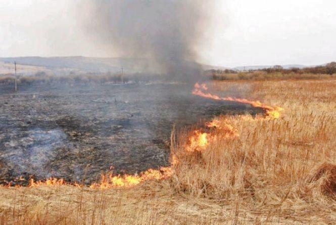 У Лугинському районі пожежним вдалося зупинити вогонь за 50 м від будинків